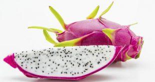میوه دراگون