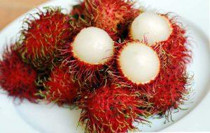 خرید اینترنتی میوه رامبوتان